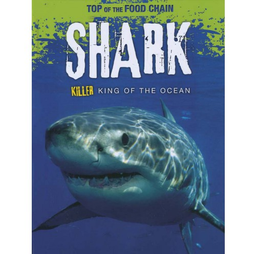 Top of the Food Chain - Shark