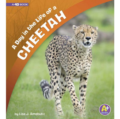 A Day in the Life - A Day in the Life of a Cheetah