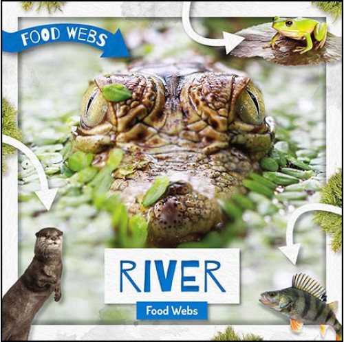 Food Webs - River Food Webs