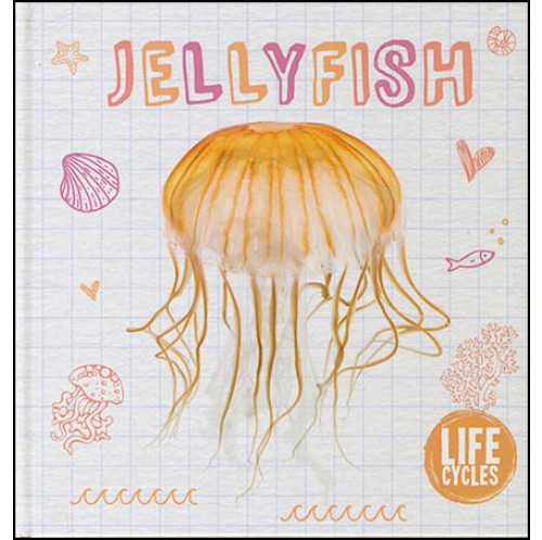 Life Cycles - Jellyfish