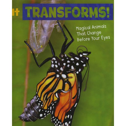 Magical Animals - It Transforms!