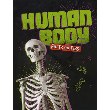 Facts or Fibs - Human Body