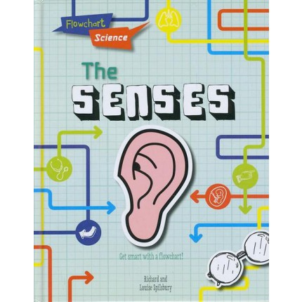 Flowchart Science - The Senses