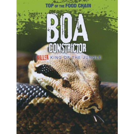 Top of the Food Chain - Boa Constrictor