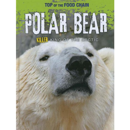 Top of the Food Chain - Polar Bear