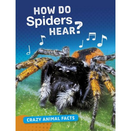 Crazy Animal Facts - How Do Spiders Hear?