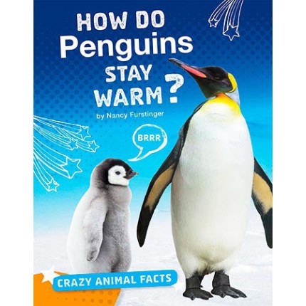 Crazy Animal Facts - How Do Penguins Stay Warm?