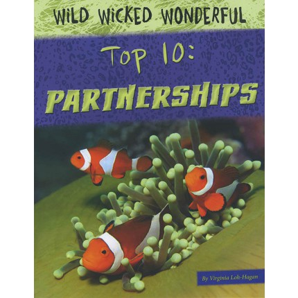 Top 10 - Partnerships