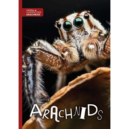 Animal Classification - Arachnids