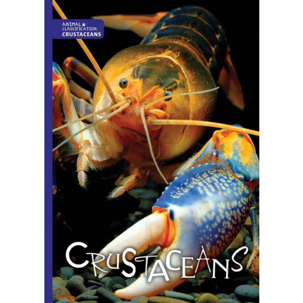 Animal Classification - Crustaceans