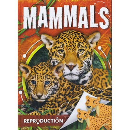 Reproduction - Mammals