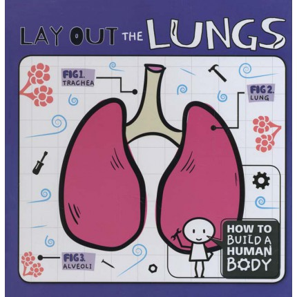 How To Build A Human Body - Lay Out the Lungs