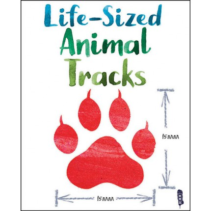 Life-Sized Animal Tracks