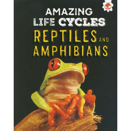 Amazing Life Cycles - Reptiles and Amphibians