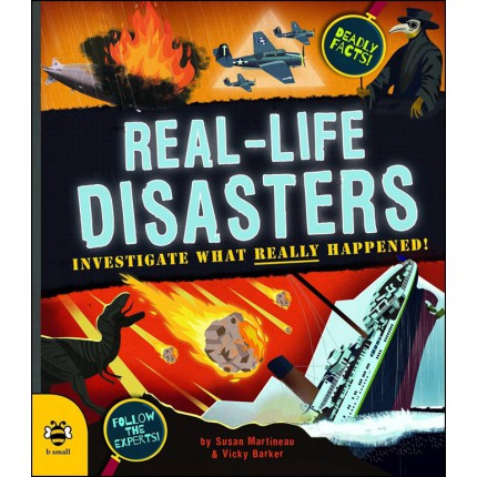Real-Life Disasters - Investigate What Really Happened