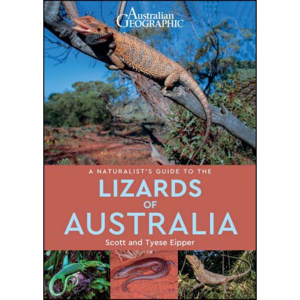 Australian Geographics - A Naturalist Guide to the Lizards of Australia