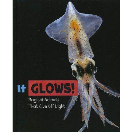 Magical Animals - It Glows!
