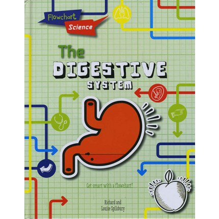 Flowchart Science - The Digestive System