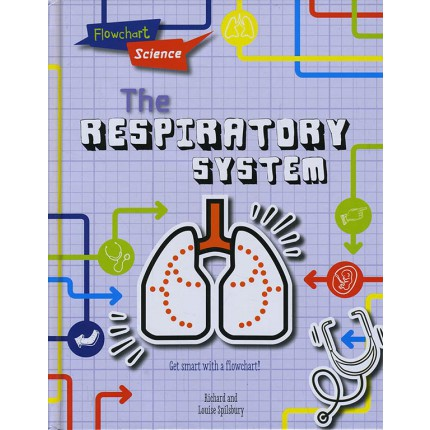 Flowchart Science - The Respiratory System