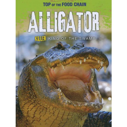 Top of the Food Chain - Alligator