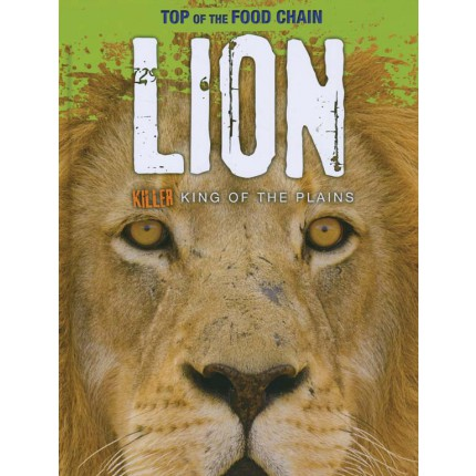 Top of the Food Chain - Lion