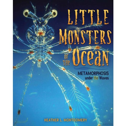 Little Monsters of the Ocean
