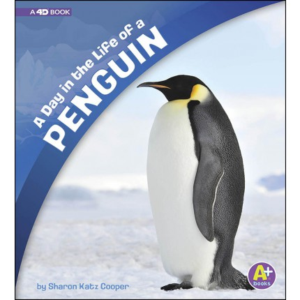 A Day in the Life - A Day in the Life of a Penguin