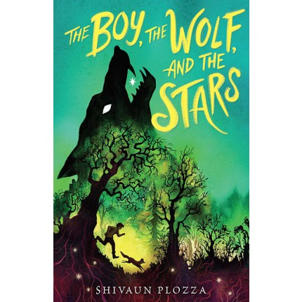 The Boy, the Wolf and the Stars