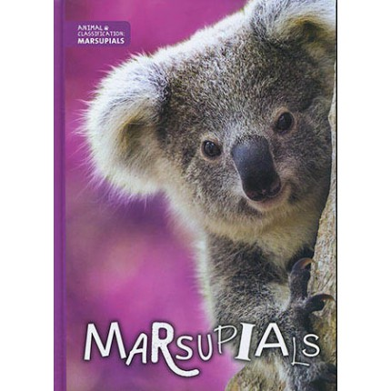 Animal Classification - Marsupials