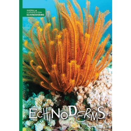 Animal Classification - Echinoderms