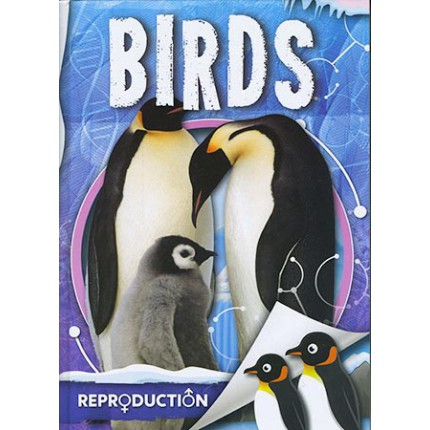 Reproduction - Birds
