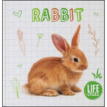 Life Cycles - Rabbit