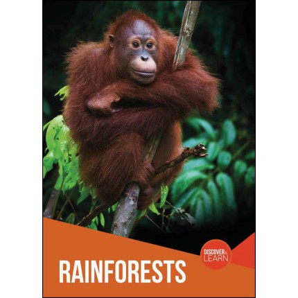 Discover and Learn - Rainforests