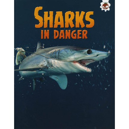 Sharks! - Sharks In Danger