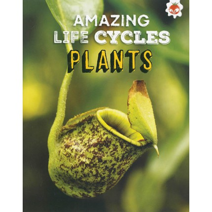 Amazing Life Cycles - Plants